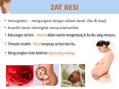 khasiat zat besi untuk wanita mengandung